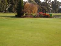 22nd May 2013 Part of the Putting Green..jpg